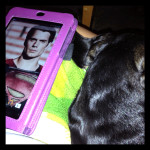 tablet and dachshund
